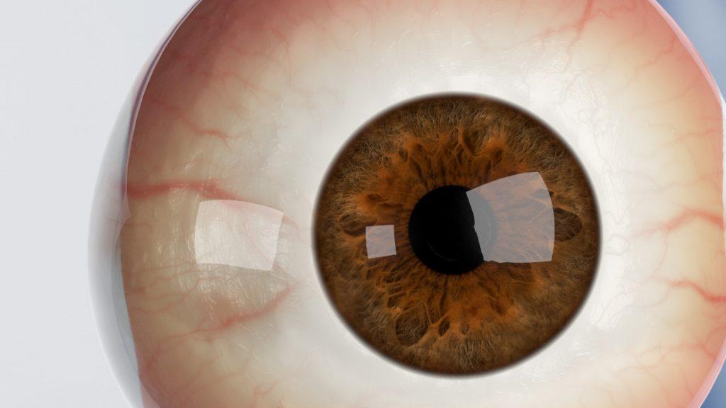 Eye_SSS_Shaser_2
